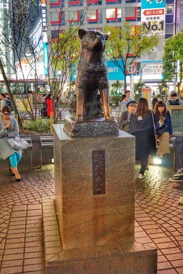 Shibuya 11