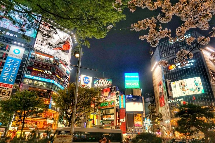 Shibuya 8