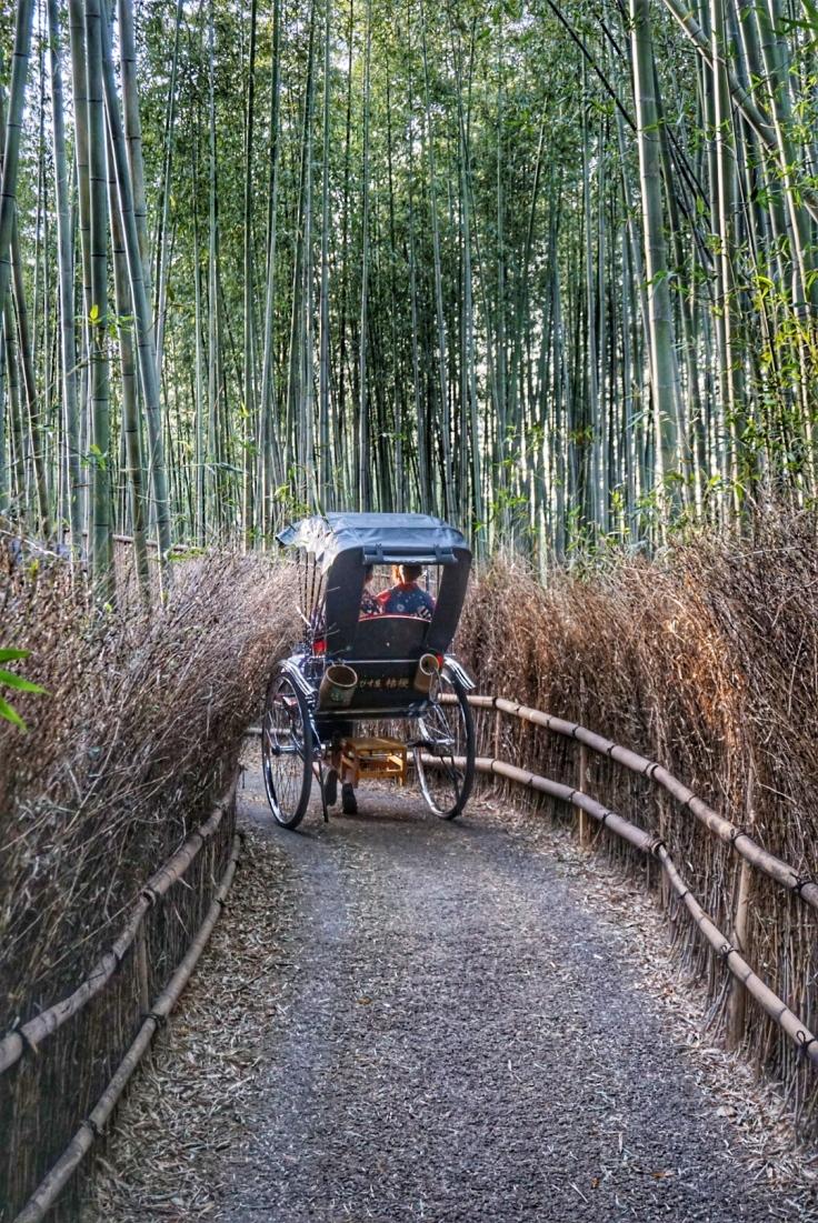 Arashiyama Rickshaw in Bamboo Grove