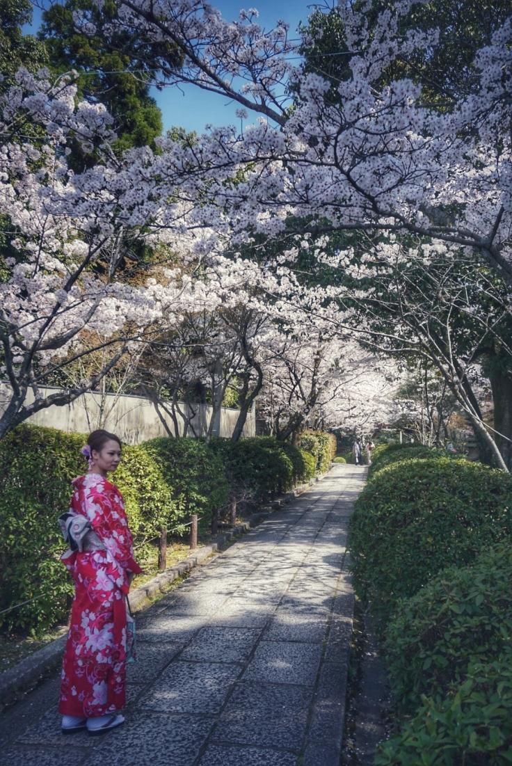Geisha Tourist in Kyoto