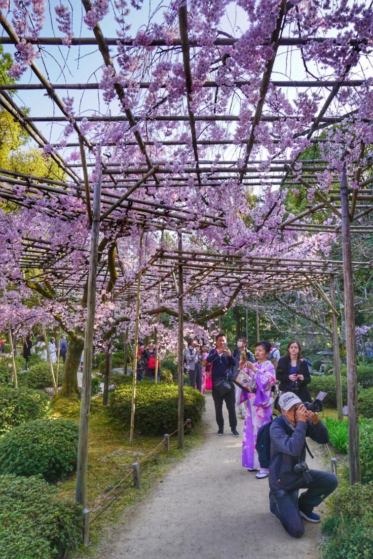 Heian Garden 2