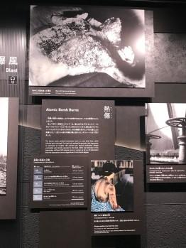 Hiroshima Museum 5